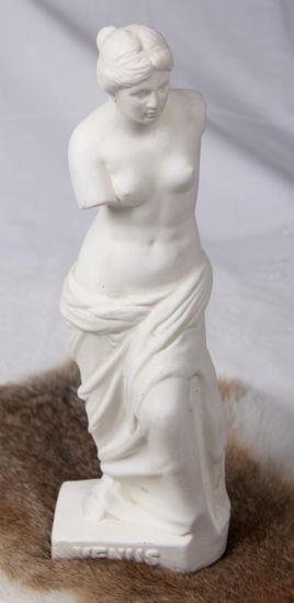 Afbeelding van Beeld Venus van Milo