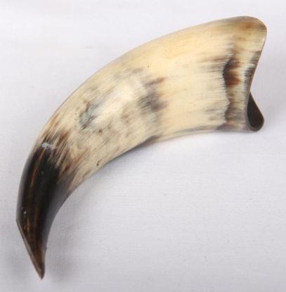 Afbeeldingen van Koeien hoorn zwart/bruin/wit