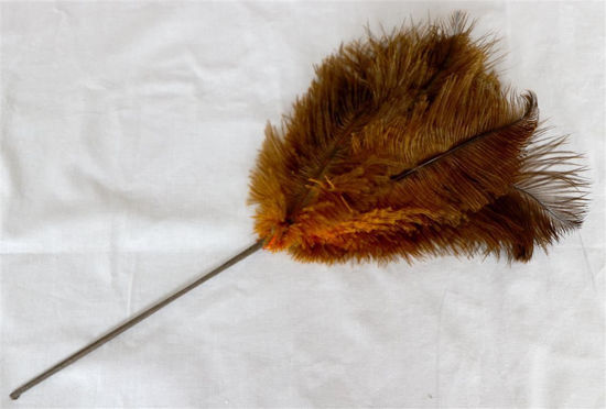 Afbeelding van Plumaeu van struisvogelveren