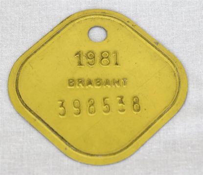 Afbeeldingen van Oud oormerk koe geel